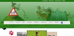 hundesport1_1483696169.jpg