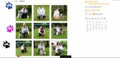 hundesport5_1483696169.jpg